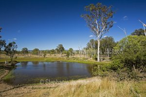 Landscape with lagoon in open grazing country in central Queensland Australia.