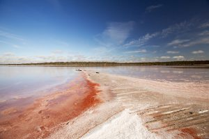 Vast expanse of pink salt and water of Lake Crozier, a salt lake in Murray Sunset National Park in outback Victoria Australia