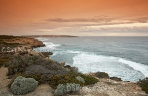 View of coastal cliffs and ocean from Point Avoid in Coffin Bay National Park on the Eyre Peninsula in South Australia