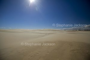 Vast sand dunes at Dark Point in Myall Lakes National Park, NSW