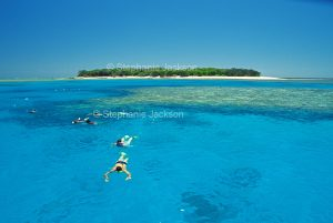 People snorkelling in lagoon with Lady Musgrave Island, on Great Barrier reef, nearby, in Queensland Australia