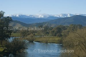 Murray River in a winter landscape with the snow-capped Snowy Mountains in the distance - near Corryong in Victoria, Australia.