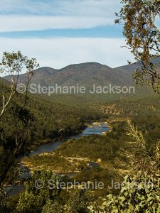 Snowy River slicing through the forested ranges of the Alpine National Park in Victoria Australia
