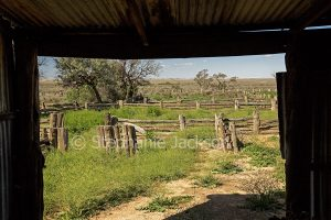 Landscape viewed through window of woolshed, old stock yards at Zanci station in Mungo National Park in outback NSW Australia