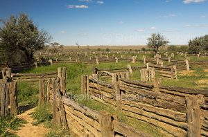 Old stock yards at Zanci station in Mungo National Park in outback NSW Australia