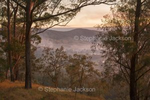 Misty morning / dawn over valley and ranges in Tooloom National Park in NSW Australia