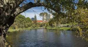 Torrens River and parklands hemmed by buildings of CBD in city of Adelaide, South Australia