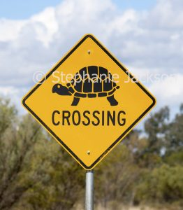 Road sign warning drivers that turtles cross the road beside the Warrego River near the Queensland outback town of Cunnamulla.