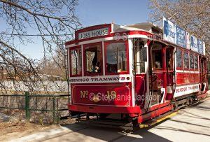 Historic tram in the Victorian city of Bendigo.