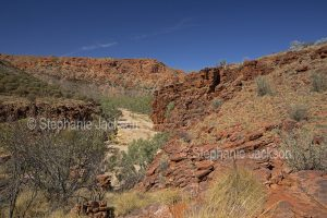 Trephina Gorge, East MacDonnell Ranges, outback, Northern Territory, Central Australia