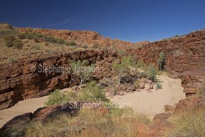 Trephina Gorge, East MacDonnell Ranges, in the outback, Northern Territory, Central Australia