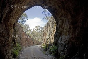 Narrow dirt road / track and entrance to old tunnel, disused historic railway tunnel, in Wollemi National Park in NSW Australia