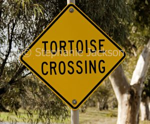 Tortoise crossing road sign near a river at Boort in Victoria.