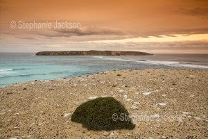 View of Golden Island from Coffin Bay National Park on the Eyre Peninsula in South Australia.