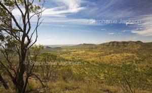 Australian landscape of valley and ranges from MInerva Hills National Park in Queensland Australia