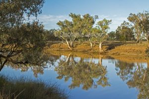 The Ward River near Charleville in outback Queensland Australia.