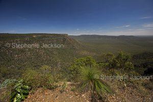 Vast landscape of forested valleys and ranges at Blackdown Tablelands National Park in Queensland Australia