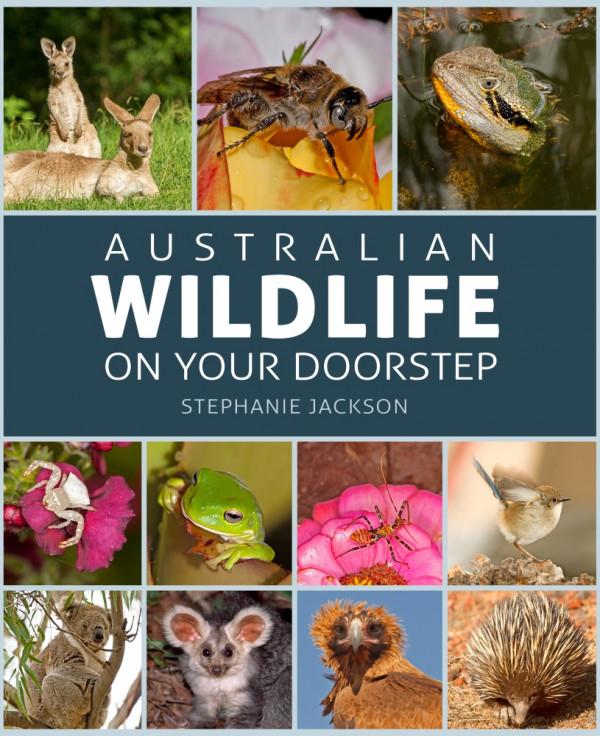 Australian wildlife on your doorstep - book