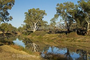 Cooper Creek at Innamincka in northern / outback South Australia.