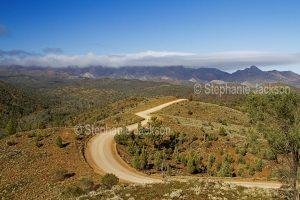 Ridgeback road winding through hills of Flinders Ranges National Park in outback / northern South Australia.