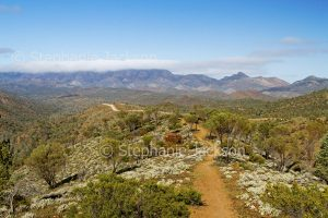 Ridgeback road and walking track winding through hills of Flinders Ranges National Park in outback / northern South Australia.
