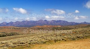 Rugged peaks of Flinders Ranges National Park beyond rolling hills in outback / northern South Australia.