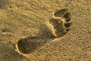 Footprint in damp sand of beach in Australia