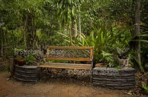 Wooden bench in lush sub-tropical garden in Queensland Australia
