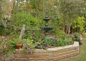 Garden with decorative fountain, stone wall and plants in containers in Queensland Australia.