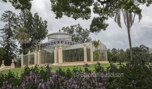 Historic conservatory / greenhouse in the botanic gardens in the city of Adelaide, South Australia.