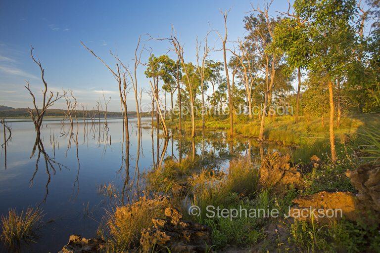 Lake at dawn at Paradise dam near Biggenden in Queensland Australia.