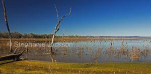 Panoramic landscape with vast lake in Nuga Nuga National Park in Queensland Australia