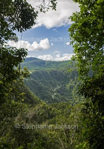 Forested ranges of Eungalla National Park in Queensland Australia