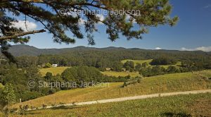 Landscape with valley hemmed with forested hills near Dorrigo in northern NSW Australia.