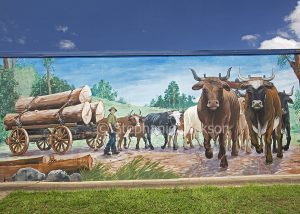 Street art / mural depicting local history, bullock cart, painted on wall in Woombye in Queensland Australia