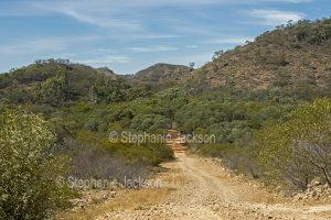 Narrow dirt track / road through forests and ranges in Minerva Hills National Park in Queensland Australia