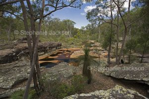 Australian landscape with rock pools and water in Mimosa Creek hemmed by forests at Blackdown Tablelands National Park in Queensland Australia