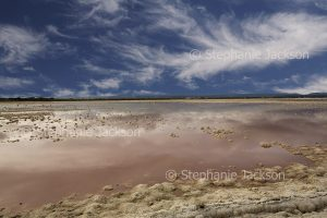 Vast pink lake under blue sky, salt flats, pink water due to algae, at Saint Kilda, coastal South Australia