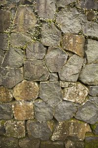 Section of dry stone wall in garden in NSW Australia.