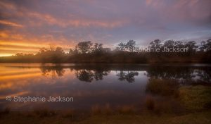 unrise on a misty morning over the Manning River at Wingham in NSW Australia.
