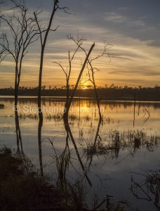 Sunrise over the calm waters of the lake at Paradise Dam, near Biggenden in Queensland Australia.