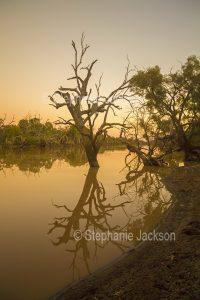 Sunset at the Warrego River in Cunnamulla in outback Queensland Australia.