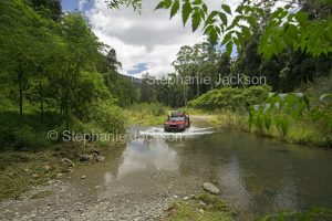 4 x 4 vehicle crossing water of creek hemmed by forests in Conondale Ranges National Park in Queensland Australia